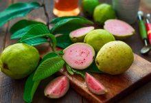 Photo of घर पर बनाएं अमरूद की खट्टी मीठी सब्जी, जानें इसको बनाने की रेसिपी के बारे मे