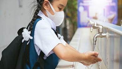 Photo of Global Handwashing Day : इन नेचुरल चीजों से करें हैंड वॉश, जानिये इन 4 चीजों के बारे में