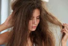 Photo of Protein Deficiency: रुखी त्वचा और बालों के झड़ने से हैं परेशान तो जानिए ये 10 लक्षण जो प्रोटीन की कमी को देते है संकेत